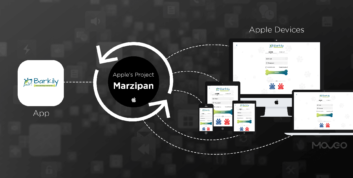 Apple's Marzipan – Decoding the effects on Apple App Developers
